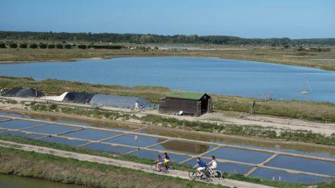 Marais de l'Ile d'Olonne Crédit photo Antoine Martineau